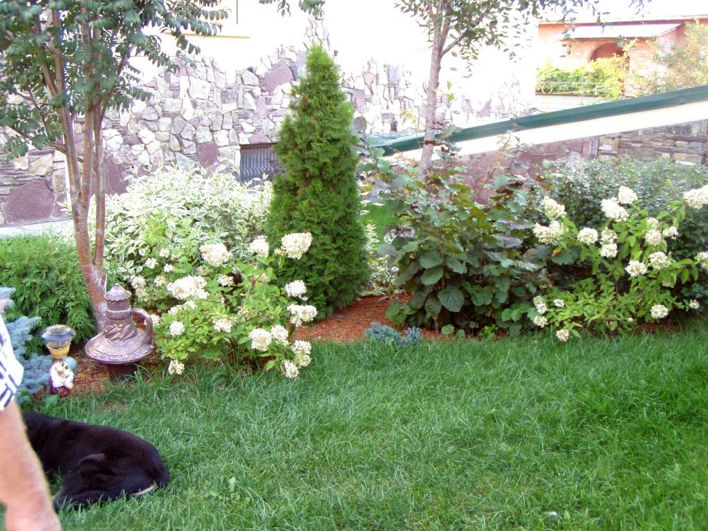 Бесплатно поделки для сада своими руками